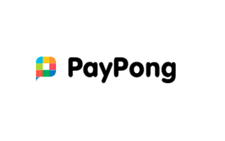 PayPong logo